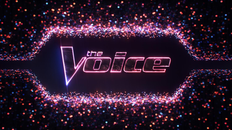 The Voice s3
